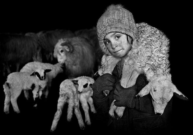 Istvan Kerekes – Shepherds from Transylvania