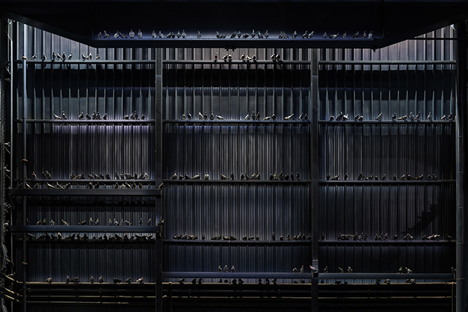 Maurizio Cattelan - Ghosts, 2021. Veduta dell'installazione, Pirelli HangarBicocca, Milano, 2021. Piccioni in tassidermia, Dimensioni ambientali. Courtesy l'artista e Pirelli HangarBicocca, Milano. Foto: Agostino Osio
