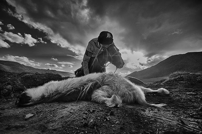 Alain Schroeder (Belgium) - 2nd place Winner. Title: Dead Goat Polo 10. Series: Dead Goat Polo. AAP Magazine #20 TRAVELS