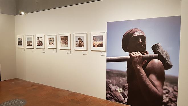 Capa in color - Gallerie Estensi, Modena, installation view. Photo credit: M.C. Montecchi