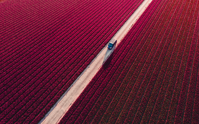 Mike Tesselaar | Drone Awards 2021. Title: Blooming Delivery, Netherlands