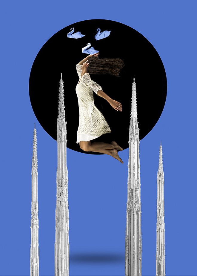 Erika Zolli - Swans, Ascendit, Fine Art series